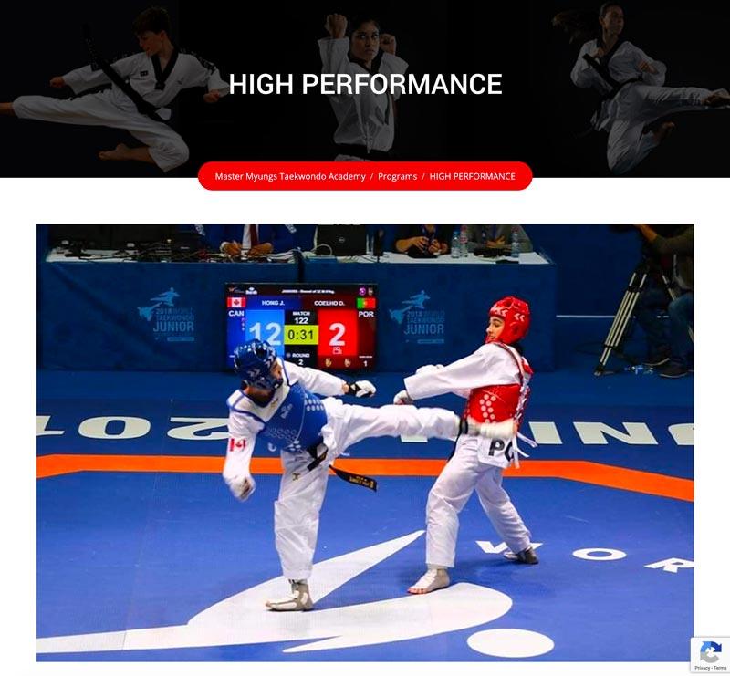 myungs taekwondo high performance
