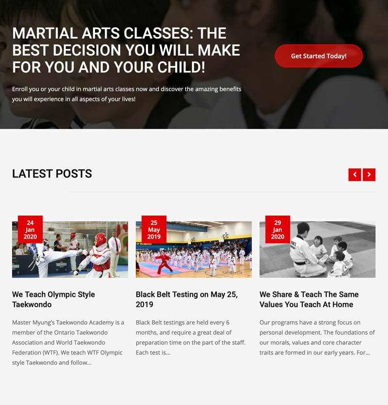 myungs taekwondo blog